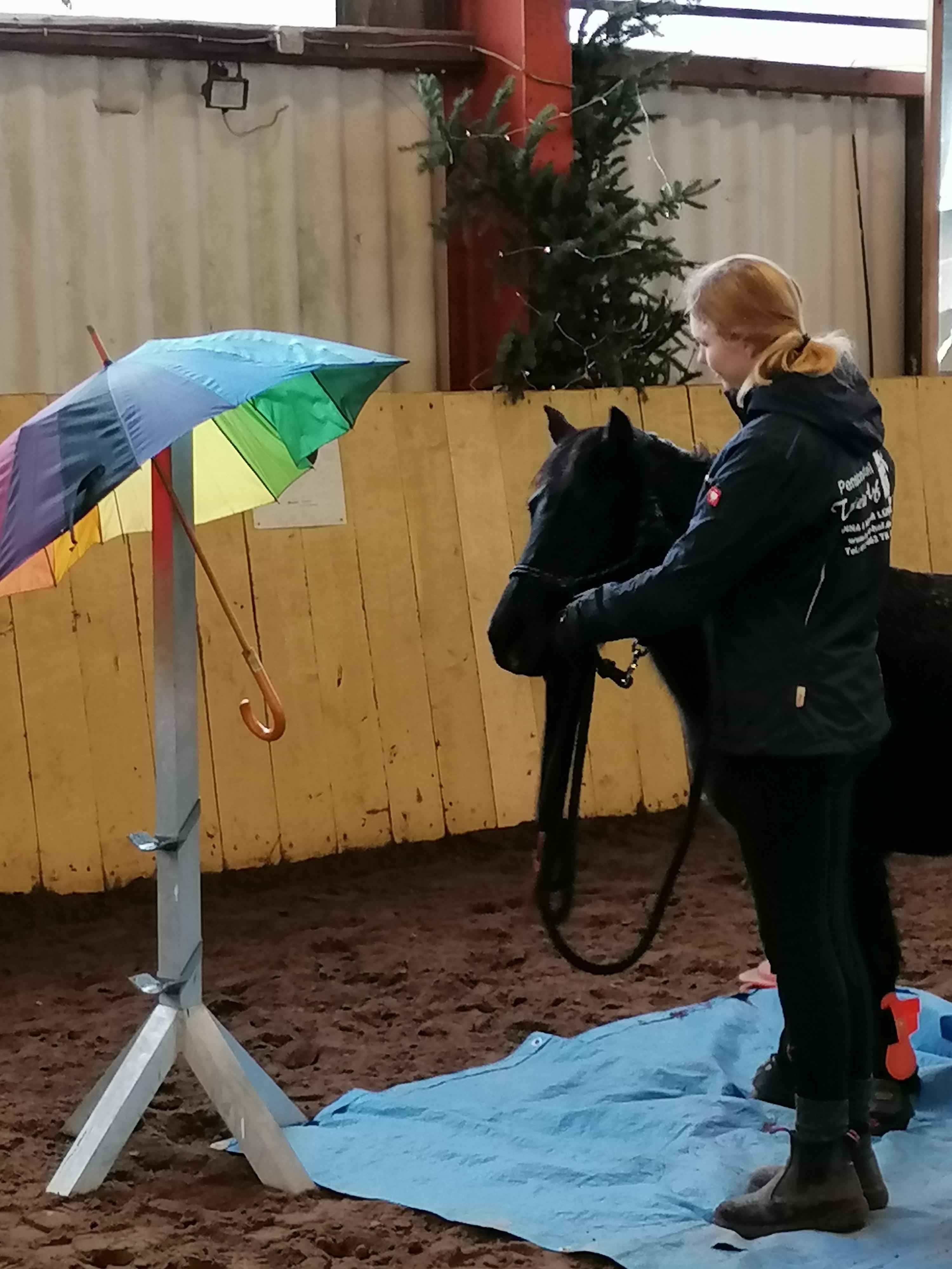 Regenschirme sind für Ponys völlig ungefährlich...