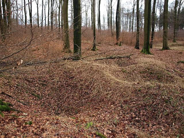 Pingen zeugen vom Eisenerzbergbau in der Nähe von Altenbeken, Foto: Daniel Götte
