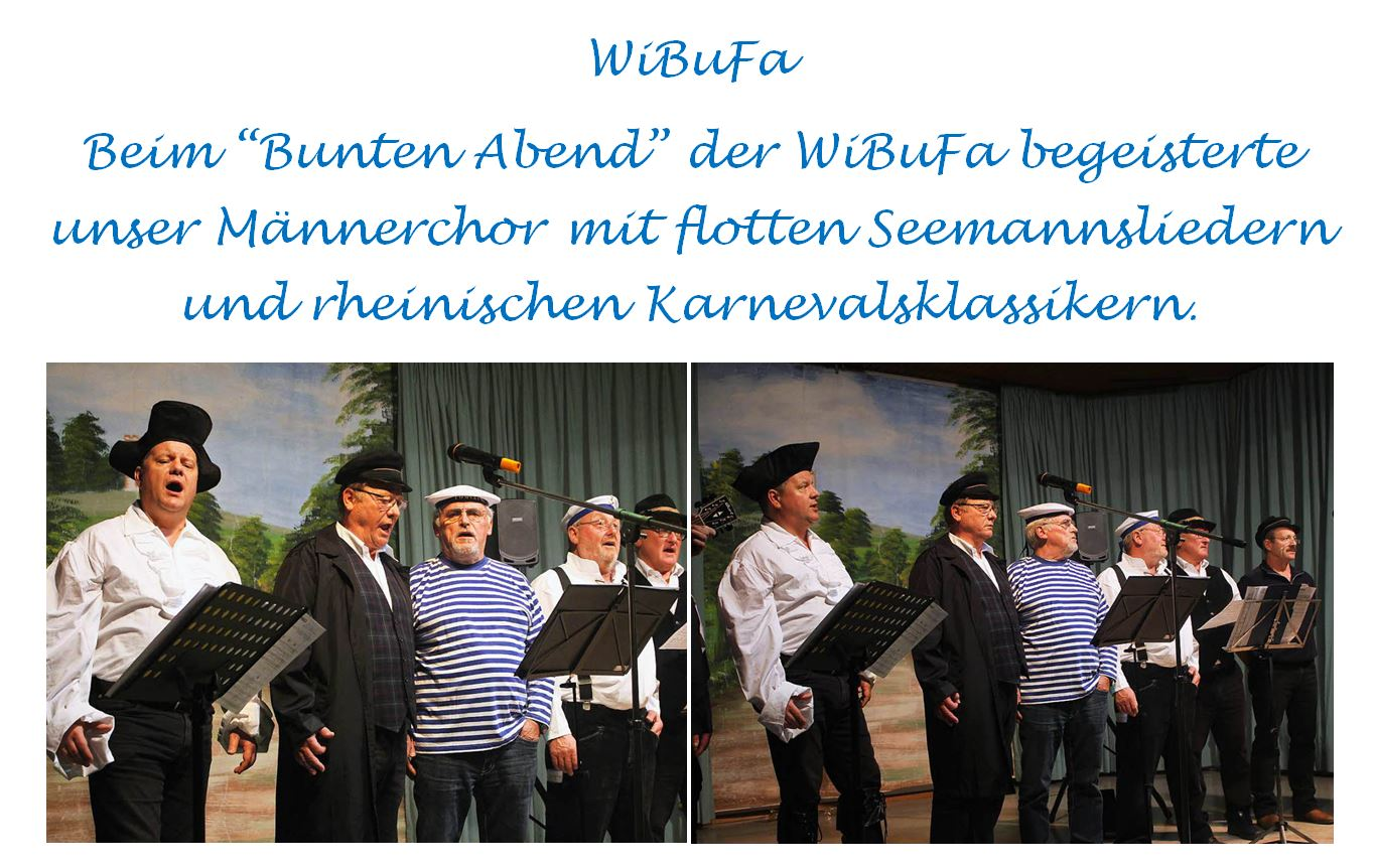 Bunter Abend WiBuFa 2016
