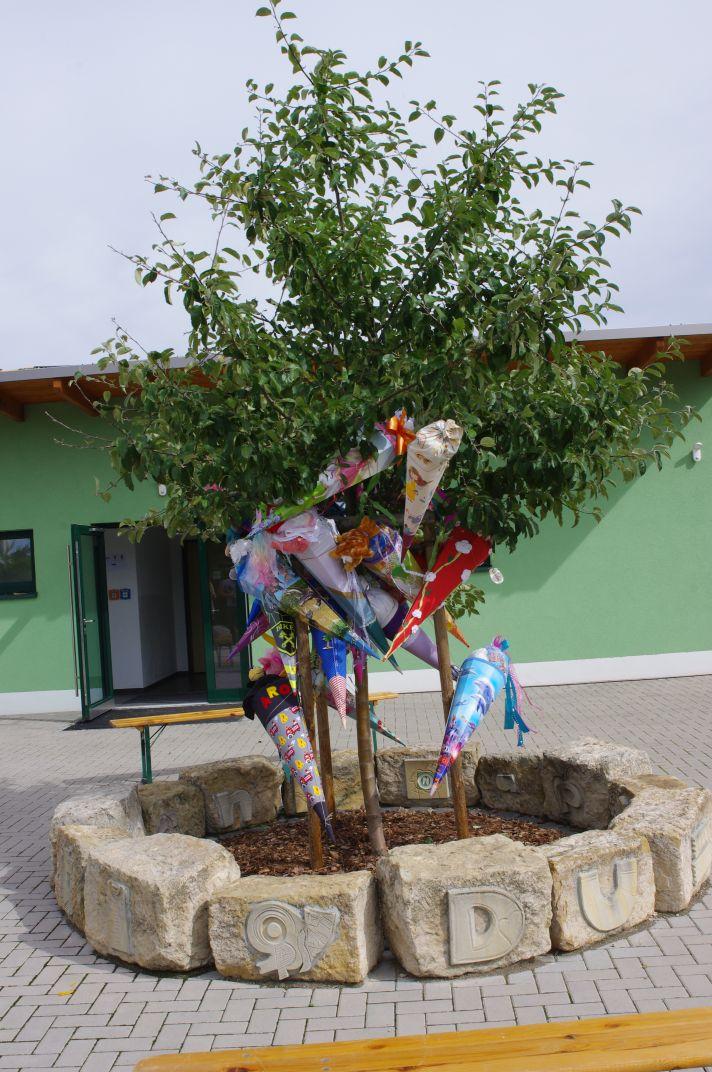 Zuckertütenbaum zur Einschulung 2020