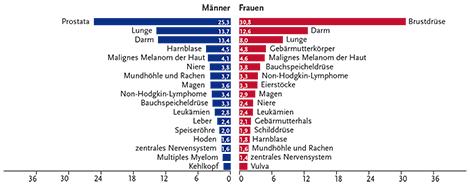 Anteil der häufigsten Tumorlokalisationen an allen Krebsneuerkrankungen in Deutschland 2012 (ohne nicht-melanotischen Hautkrebs) - Angaben in Prozent