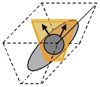 langer diagonaler Zehrweg in der Oberträgerbeute