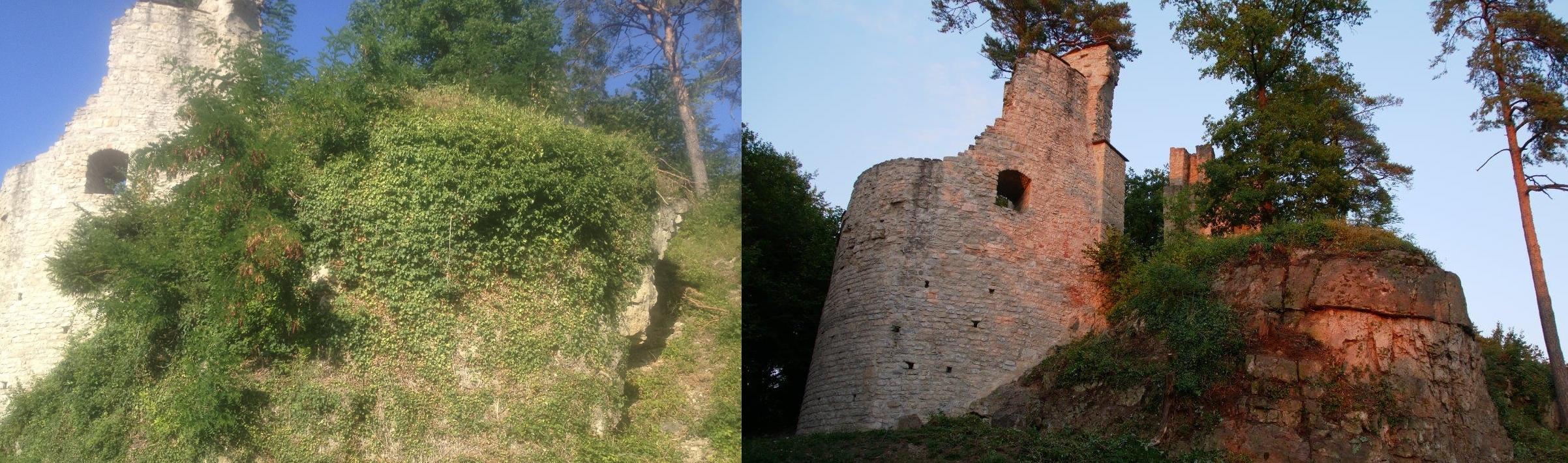 Fels vor (links) und nach (rechts) den Mäharbeiten