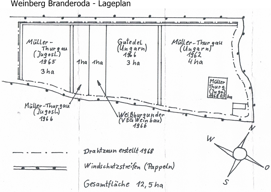 historischer Lageplan vom Weinberg Branderoda in den 1960er Jahren