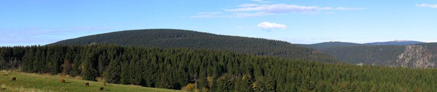 Westharz mit Blick auf den Brocken