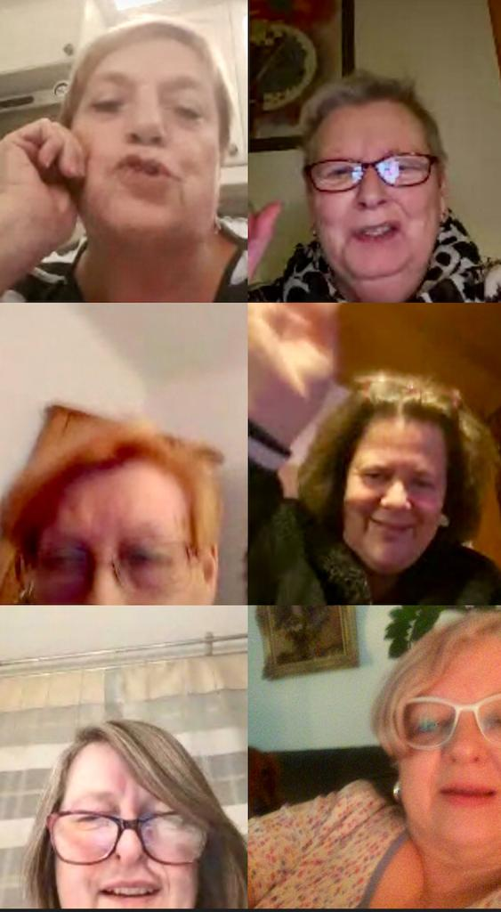 Videokonferenz Vorstand Gruppe Märkische Heide, Anne Muchow, Ulrike Cohrs, Helga Schmidt, Lilian Recknagel, Heike Maiwald v.o. li. beginnend.